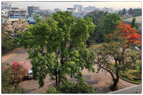 Waakzicht 240316 0852 Udon Thani Thailand Charoen Hotel k430 IMG_6652