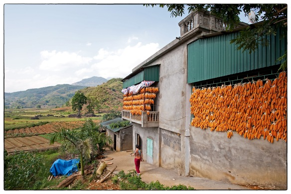 After the harvest - a typical rural scene in Lai Chau, northern Vietnam | april 2013