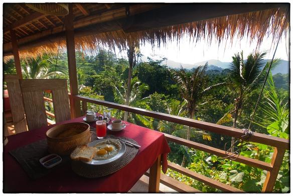 Eetzicht 150315 0753 Teras Bali, Sidemen _HDC7256