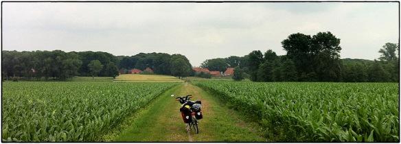 Dan de eerste boerenweggetjes in Duitsland. Eindeloze akkers met maïs, dorpjes waar de tijd lijkt stil te staan.Een levensgroot cliché, maar het bestaat. Zoals hier, bij Gräfinghausen.