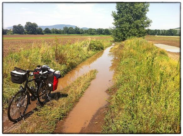 Dit is een deel van de officiële fietsroute in Tsjechië. Het alternatief was zo'n 15 kilometer om over een geasfalteerde weg. Bij ruim 30 graden wil je niet méér kilometers maken dan nodig, dus vooruit. Halverwege denk je: omkeren. Maar wanneer is halverwege? Doorgaan dus. Enkeldiep door water en modder.