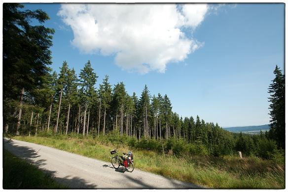Und ewig singen die Wälder. Zou er een Tsjechische versie van bestaan? Hoog en moederziel alleen in het natuurpark Utersky ten westen van Plzen.