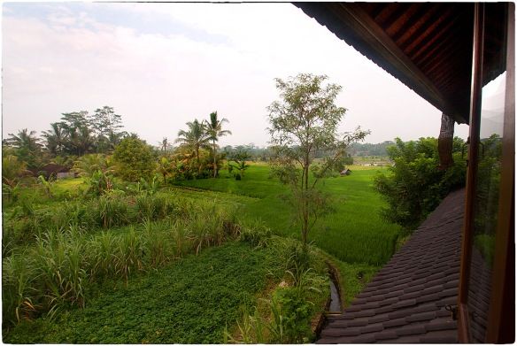 Waakzicht  140315 0754 Hotel Bliss Ubud k202_HDC7246