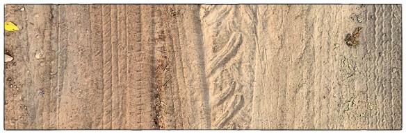 Dit is glibberen en slippen: los zand, soms twee, drie centimeter dik waarin je voorwiel wegglijdt als je niet oppast. Vijf kilometer van dit spul en je bent aan een pauze toe.